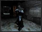 Stalker CS 'Clear shot' v13.0 final