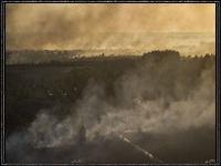 Пожар в Зоне отчуждения