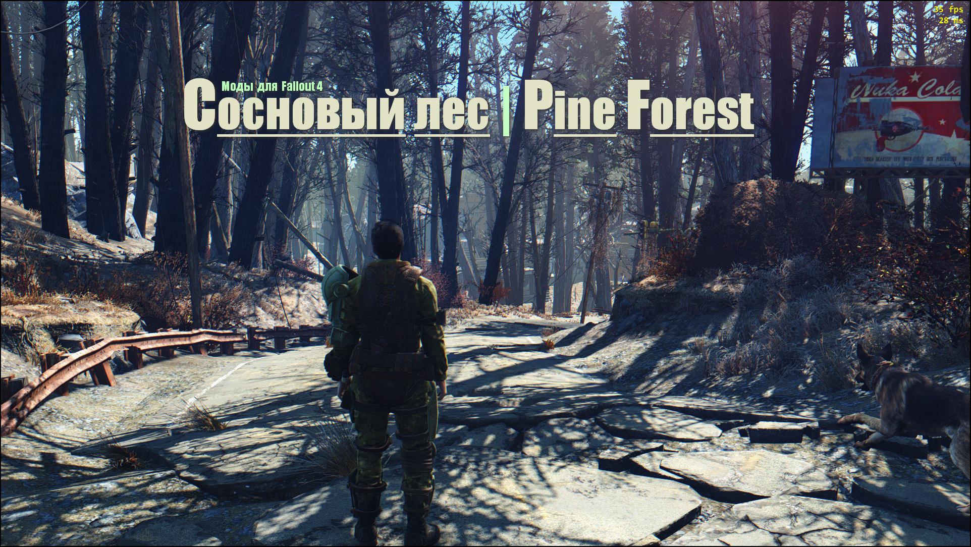 Fallout 4 Сосновый лес